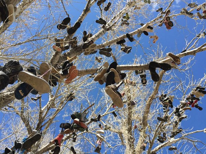 Shoe Tree, Middlegate